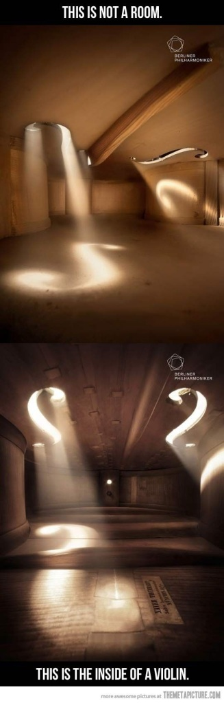 inside of a violin photo
